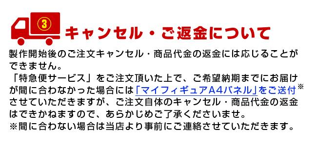 マイフィギュア「特急便サービス」